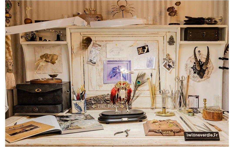 Taxidermiste & Artisant d'art – WordPress & Divi